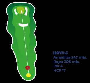 hoyo-5-ilustracion